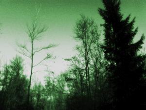 snimka0415g